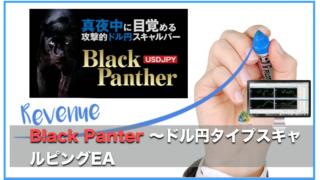BlackPanther USDJPY〜高収益を実現した攻撃的スキャルピングEAの評判