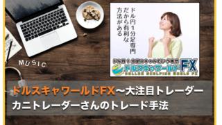 ドルスキャワールドFX〜カニトレーダーのトレード手法が教材に!インジケーター